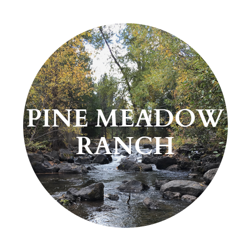Pine Meadow Ranch
